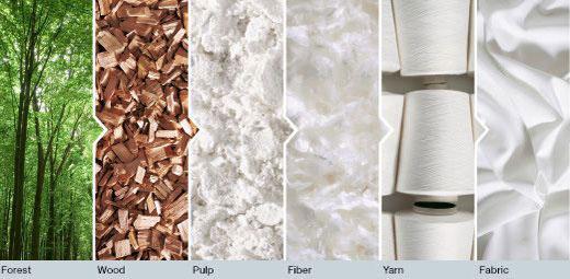Những điều bạn chưa biết về chất liệu vải Tencel